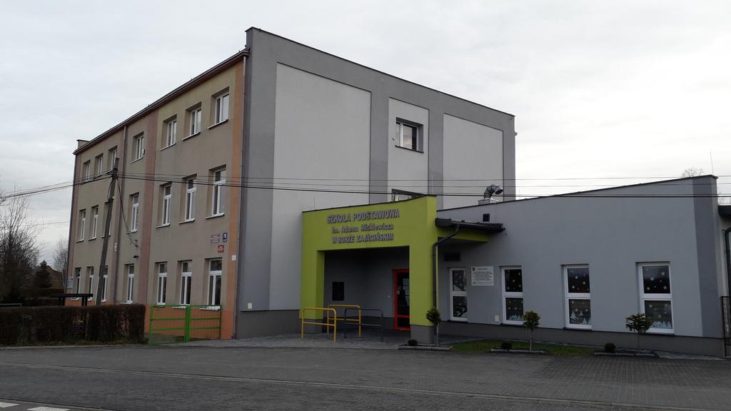 Szkoła Bór Zajaciński.jpeg